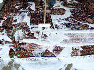 oriental rug cleaning maryland